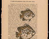 Pag.47, Acquario di pesci gialli .Posizione pagina: verticale.