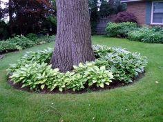 Beautiful Large Yard Landscaping Design Ideas (15)
