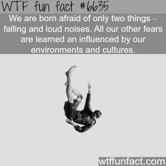 We are born afraid of these two things - WTF fun facts                                                                                                                                                                                 More