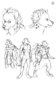 wolf anatomy - بحث Google