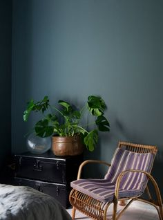 Green-blue wall in the bedroom of a lovely laid back flat in Malmö, Sweden