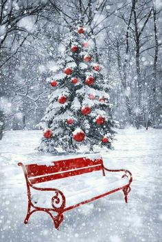 christmas Country Christmas, White Christmas, Christmas Pictures, Christmas Art, Winter Christmas Scenes, Beautiful Christmas Scenes, Christmas Holidays, Xmas, Red Bench