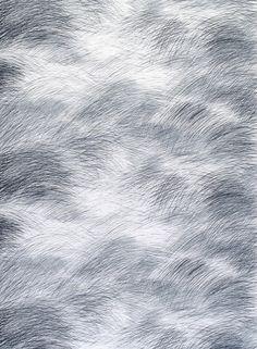 Lepo cotton fabric by Marimekko Black And White Background, Black And Grey, Ash Grey, Grey Fabric, Cotton Fabric, Fabric Art, Ale, Marimekko Fabric, Textiles