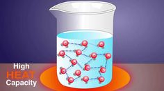 The Properties of Water Ricochet Science