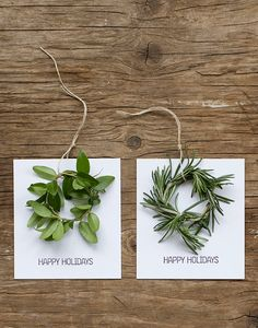 gift tags with greenery Just figured out what to do with my half frozen herb garden...