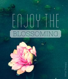 Everything is shifting. Opening. Becoming. Blossoming. Enjoy.