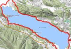 Entlang dem Seeufer rund um den Fuschlsee - BERGFEX - Wanderung - Tour Salzburger Land Der Bus, Map, Nature Reserve, Tours, Hiking, Round Round, Location Map, Maps