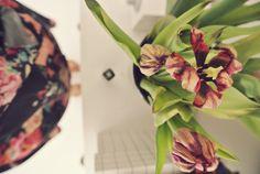 visual diary - Blogi | Lily