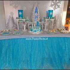 party FROZEN  - Disney Frozen