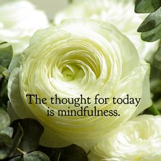 DAY 36 Mar. 6: The thought for today is MINDFULNESS. Mindfulness is thinking about what you're doing and knowing why you're doing it. If we just act in each moment with composure and mindfulness, e...