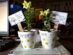 """Parent/Volunteer appreciation gift for end of the year: """"Thanks for bee-ing so helpful!"""" And then each kid makes a yellow fingerprint on the pot (which gets turned into a little bumblebee.) Cute!!"""