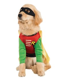 Look at this Robin Pet Costume on #zulily today!