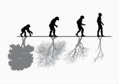 Dañino el paso del hombre por el Planeta Tierra.