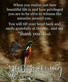 Good Morning Gif Images, Inspirational Good Morning Messages, Good Morning Wishes Quotes, Good Morning Image Quotes, Morning Quotes Images, Morning Greetings Quotes, Morning Blessings, Morning Prayers, Inspirational Quotes