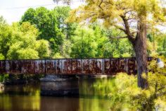 Lake Bisteneau is a scenic lake in the northwest portion of Louisiana. It is a haven for fishermen and those in search of relaxation. This scenic train trestle runs across a portion of the lake.