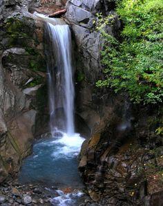 Christine Falls - Washington State ˚