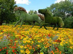 Living sculptures at Montreal Botanical Garden