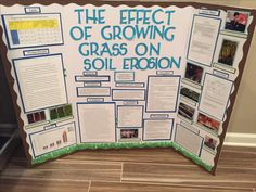 31 Best Science Fair Projects Images Science Projects Physics
