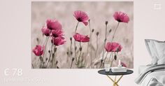 """Rosa Mohn Pastell von Tanja Riedel auf Leinwand & Poster bei ohmyprints.com ✓Kostenlose Lieferung ✓Hohe Druckqualität ✓""""Sehr gut"""" bewertet"""