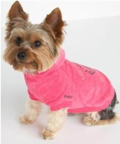 6ae170e95a0 42 Best Juicy Couture Dog Clothes images in 2012 | Dog hoodie, Cheap ...