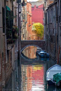 venezia blog: Autumn Colors Near the Rialto, Today