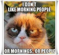 I don't like morning people, or mornings..or people.