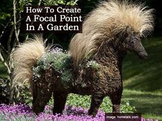 This topiary horse creates quite a focal point in a garden. The topiary is made from wire forms stuffed with sphagnum moss. The mane is Nasella and the body is planted with Dianthus. Click on the link below for the full post. This link for ideas on topiary frames. Focal Point shares Facebook Twitter Pinterest …