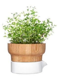 Fix herb pot