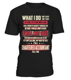 Chartered Accountant - What I Do