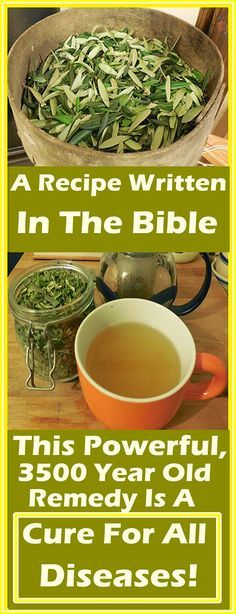 Holistic Health Remedies A Recipe Written In The Bible: This Powerful, 3500 Year Old Remedy Is A Cure For All Diseases! Holistic Remedies, Natural Home Remedies, Herbal Remedies, Health Remedies, Cough Remedies, Healing Herbs, Natural Healing, Holistic Healing, Natural Medicine