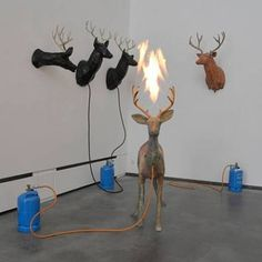 Dennis Oppenheim, Untitled (Deer)