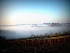 M&M: il nostro mondo in un click: Nebbia monferrina