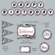 Simply Zebra with Hot Pink Birthday Party Package
