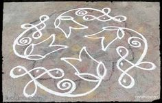 Rangoli Rev's daily kolam with chikku 77. 6 dots 6 lines | m.iKolam.com