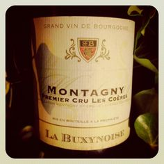 Bourgogne Blanc // Montagny 1er Cru Les Coères 1995