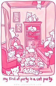 Cat Party!!
