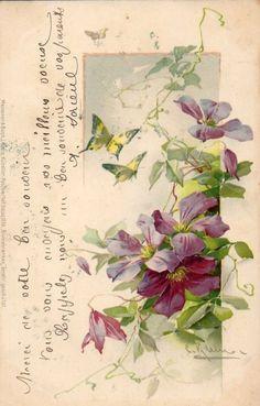"""Vintage postcard, Catherine Klein"":"