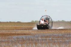 Airboat Ride The Everglades Florida
