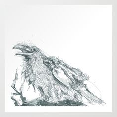Crow line drawing  Art Print Promoters - $15.00