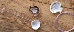 Seashell Spoons