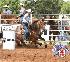 Ali Armstrong tops round No. 1 at the @ifyrshawnee photo by Rodeobum.com courtesy IFYR. Link in bio to the story and results. #ifyr #ifyr24 #barrelhorsenews