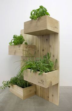THE four squares-vertical garden plant stand vertical planting planter Cedar wall planting herb garden Vertical Garden Plants, Vertical Herb Gardens, Vertical Planting, Herb Gardening, Herbs Garden, Wall Herb Garden Indoor, Organic Gardening, Vegetable Garden, Cedar Garden