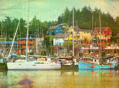 Coastal Colors. Ucluelet, Vancouver Island, British Columbia.