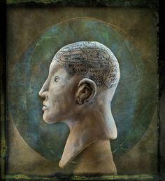 Phrenology Head wife's Pottery  By Simon Schollum