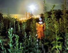 """<div class=""""artist""""><strong>Alejandro Chaskielberg</strong></div><div class=""""title_and_year""""><em>Paiva's Radiance</em>, 2008</div><div class=""""medium"""">Digital C-type print on Kodak Endura paper</div><div class=""""dimensions"""">110 x 140 cm</div><div class=""""edition_details"""">Edition of 5</div><div class=""""signed_and_dated"""">Accompanied by a signed, titled, dated and editioned artist's label</div>"""