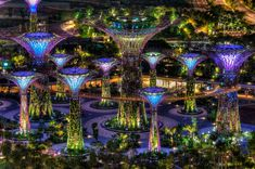 Botanische Bay Gärten von Singapur  ein grossartiges Exemplar der Landschaftsgestaltung http://kunstop.de/botanische-bay-gaerten-von-singapur-ein-grossartiges-exemplar-der-landschaftsgestaltung/ #Botanische #Bay #Gärten #Singapur #Landschaft