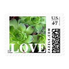 Succulent Green Plants LOVE Postage Stamps Wedding Party Invitations Announcements Save The Dates Succulents Print Photo Photos Vow Renewal Invitations, Anniversary Invitations, Anniversary Cards, Wedding Party Invites, Party Invitations, Wedding Stuff, Mothers Day Cards, Valentine Day Cards, Valentines