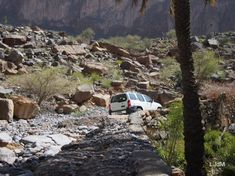 Oman - Maman Voyage Camping Sauvage, Dust Storm, Family Travel