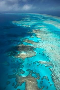 Arlington Reef, Great Barrier Reef Marine Park, North Queensland, Australia