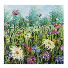West of the Wind Outdoor Canvas Art All Weather 'Daisy Day' Painting Print on Wrapped Canvas Oil Painting Flowers, Oil Painting On Canvas, Painting Prints, Canvas Wall Art, Wall Art Prints, Knife Painting, Flower Paintings, Oil Paintings, Lilac Painting
